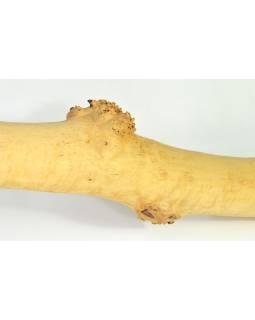 Didgeridoo, koncertné nástroj, breza, 187cm