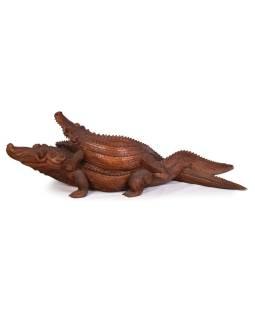 Krokodýl s mládětem, cca 1,5m