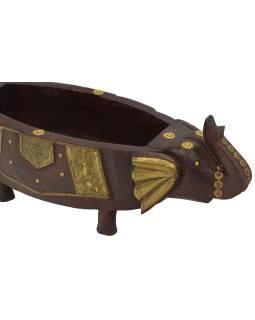 Drevená misa, slonie hlavy, mosadzné kovania, 50x18x14cm