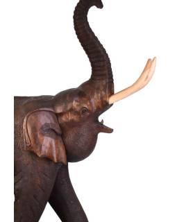 Slon - tropické drevo Cuárov, 115x55x170cm